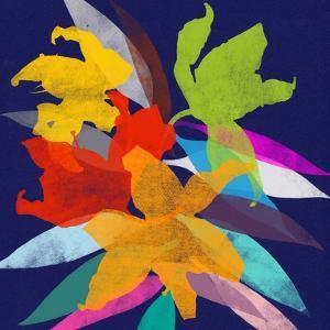 Lily 11 by Garima Dhawan