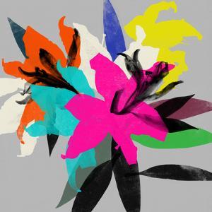Lily 12 by Garima Dhawan