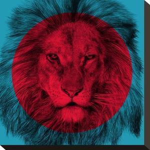Wild 2 by Garima Dhawan