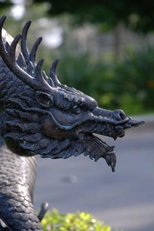 Dragon on a Background of Tropical Plants by garmonbaziya