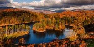Autumn Morning at Tarn Hows in the Lake District National Park, Cumbria, England by Garry Ridsdale
