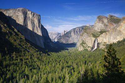 El Capitan and Bridalveil Falls Frame Half Dome and Clouds Rest, Yosemite Valley from Tunnel View by Garry Ridsdale