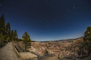 Star Trails Above Bryce Canyon National Park, Utah, United States of America, North America by Garry Ridsdale