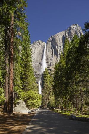 Yosemite Falls in Full Flow During Spring in Yosemite National Park, UNESCO World Heritage Site