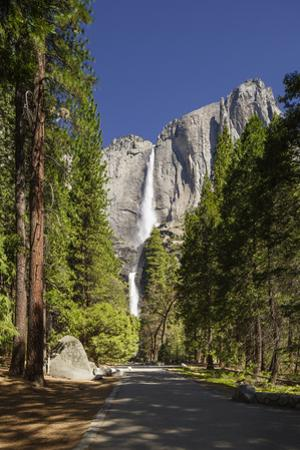 Yosemite Falls in Full Flow During Spring in Yosemite National Park, UNESCO World Heritage Site by Garry Ridsdale