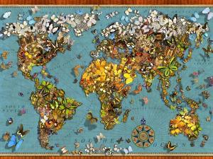 Butterfly Map (Variant 1) by Garry Walton