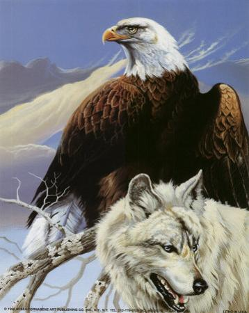 Eagle and Wolf by Gary Ampel