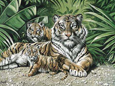 Yellow Tigers with Cubs by Gary Ampel