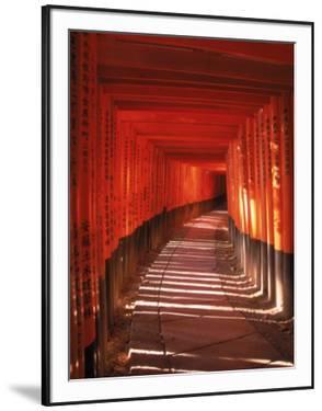Fushimi-Inari Taisha Shrine, Japan by Gary Conner