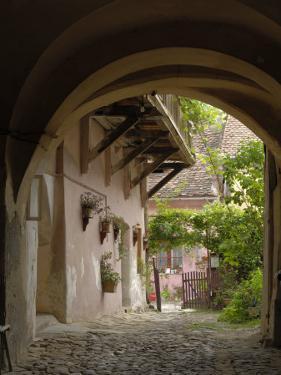Alleyway, Sighisoara, Transylvania, Romania, Europe by Gary Cook