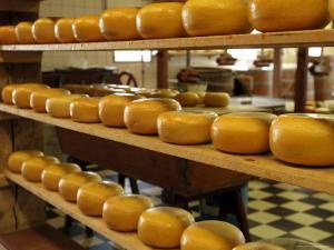 Dutch Cheese, Zaanse Schans, Zaandam Near Amsterdam, Holland (The Netherlands) by Gary Cook