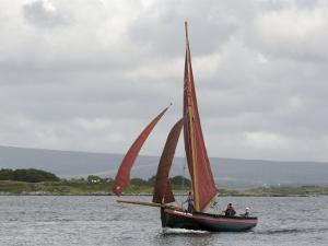 Galway Hookers at Roundstone Regatta, Connemara, County Galway, Connacht, Republic of Ireland by Gary Cook