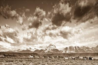 Wyoming Skies by Gary Crandall