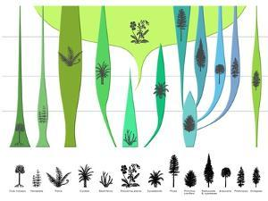 Plant Evolution, Diagram by Gary Gastrolab