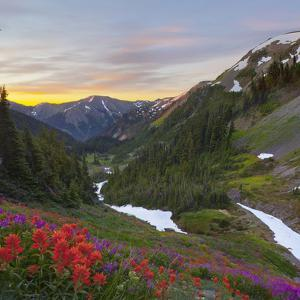 Badger Valley Sunrise, Olympic National Park, Washington, USA by Gary Luhm