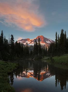 Mt Rainier Reflected in Mirror Pond, Mt Rainier NP, Washington, USA by Gary Luhm