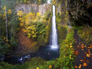 Tunnel Falls in a Fall Color Scene on Eagle Creek in the Columbia Gorge, Oregon, USA by Gary Luhm