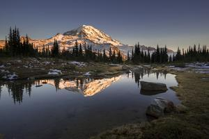 USA, WA. Tarn in Spray Park reflects Mt. Rainier at sunset in Mt. Rainier National Park. by Gary Luhm