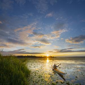 USA, Washington. Kayaker Paddling on Lake Washington's Union Bay by Gary Luhm