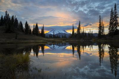 Washington, Mt. Rainier National Park