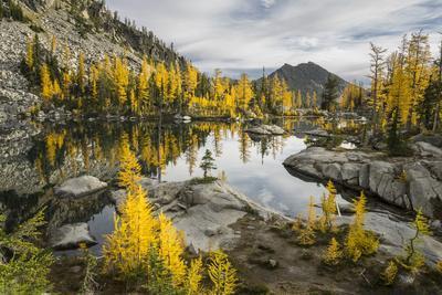 Washington, Subalpine Larch Surround Horseshoe Lake, Alpine Lakes Wilderness