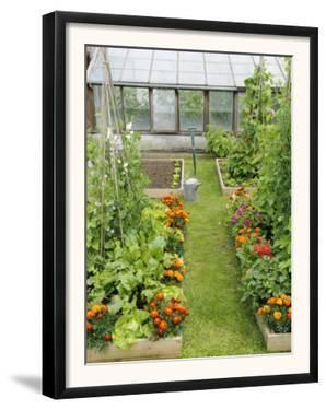 Summer Garden with Mixed Vegetables and Flowers Growing in Raised Beds with Marigolds, Norfolk, UK by Gary Smith