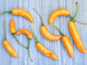Yellow Chilli Peppers Chillies Freshly Harvested on Pale Blue Background by Gary Smith