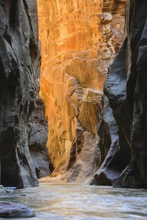 Virgin River Narrows, Zion National Park, Utah, United States of America, North America