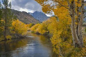 Usa, California, River through Eastern Sierra Nevada Mountains by Gary Weathers