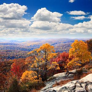 The Foliage Scenery from the Top of Bear Mountain by Gary718
