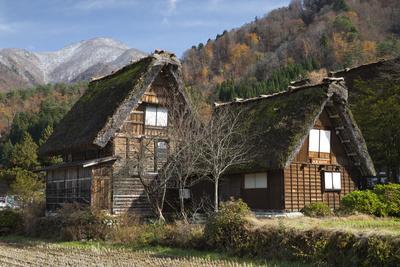https://imgc.allpostersimages.com/img/posters/gassho-zukuri-folk-houses-ogimachi-village-shirakawa-go-near-takayama-central-honshu-japan_u-L-PWFJR30.jpg?p=0