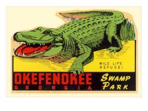 Gator from Okefenokee Swamp Park