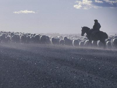 https://imgc.allpostersimages.com/img/posters/gaucho-patagonia-argentina_u-L-P2OUPW0.jpg?artPerspective=n