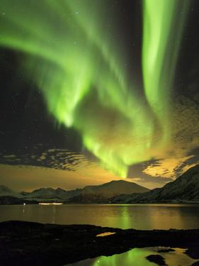 Aurora Borealis, Northern Lights, Troms Region, Norway by Gavin Hellier