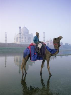 Camel and Rider in Front of the Taj Mahal and Yamuna River, Taj Mahal, Uttar Pradesh State, India by Gavin Hellier