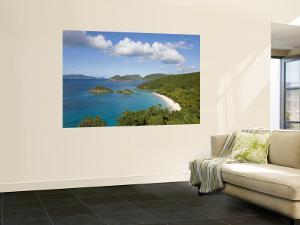 Caribbean, US Virgin Islands, St. John, Beach at Trunk Bay by Gavin Hellier