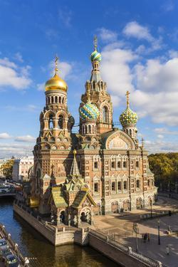 Domes of Church of the Saviour on Spilled Blood, Saint Petersburg, Russia by Gavin Hellier