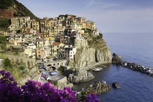 Manarola, Cinque Terre, UNESCO World Heritage Site, Liguria, Italy, Europe by Gavin Hellier