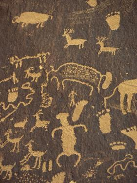 Rock Petroglyphs of Footprints and Animals, Newspaper Rock State Historical Monument, in Utah, USA by Gavin Hellier