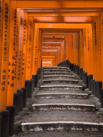 Torii Gates, Fushimi Inari Taisha Shrine, Kyoto, Honshu, Japan by Gavin Hellier