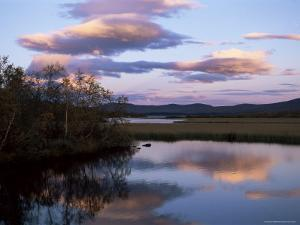 Trees and Lake at Sunset, Laponia, Lappland, Sweden, Scandinavia by Gavin Hellier