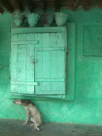 Dog Scratching Himself Against a Window Ledge