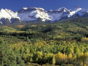 Fall Color and Landscape, Mt. Sneffels Wilderness, Colorado, USA by Gavriel Jecan