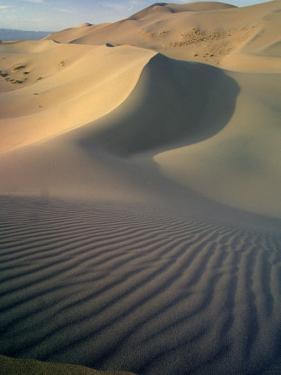 Khongoryn Sand Dunes in Gurvansaikhan National Park, Gobi Desert, Mongolia by Gavriel Jecan