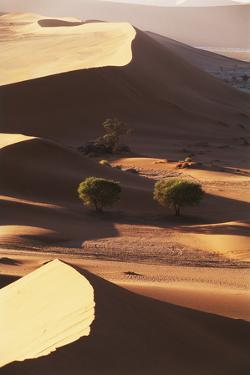 Namibia, Sesriem and Sossusvlei, Sand Dunes Desert at Namib NP by Gavriel Jecan