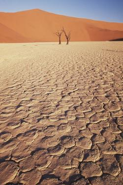 Namibia, Sossusvlei Region, Dry Sand Dunes at Desert by Gavriel Jecan