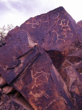 Petroglyphs in Gurvansaikhan National Park, Gobi Desert, Mongolia by Gavriel Jecan