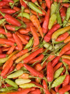 Thai Chili, Khon Kaen Market, Thailand by Gavriel Jecan