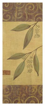 Eucalyptus Leaves II