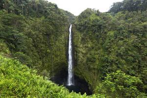 Akaka Falls, Hawaii, Big Island by Gayle Harper